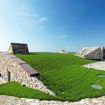 """""""Зелен покрив"""" краси сградата..."""