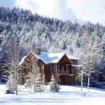 Зимни фантазии