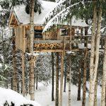 Кацнала на дървото къщичка