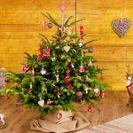 Малка или голяма, естествена или изкуствена, елхата е най-любимия гост в дома по време на Коледните празници!