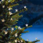Лампички-звездички