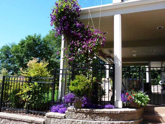 Водопад от цветове залива градината!