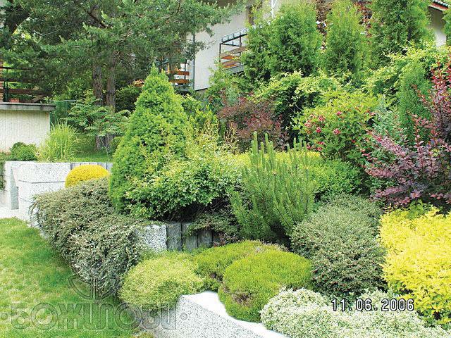 Градината – вълшебство от цветове и ухания (смесени храстови бордюри)