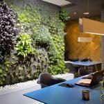 """Двустранна """"зелена"""" стена подобрява микроклимата в офиса"""