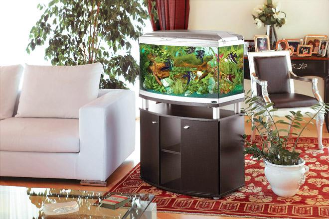 Интериорният аквариум – I част