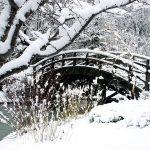 По мостчето, по мостчето и  право към пролетта!