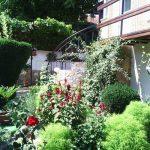 Градина на Светла Кърчева-Веселинова