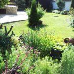 Градината на  Даниела Стамова