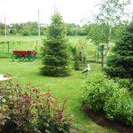 Градина с декоративни елементи - Ели Йорданова - с. Червена вода