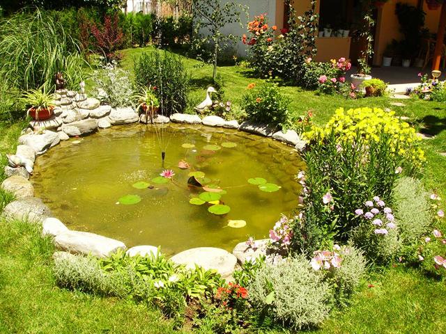 Декоративно езеро - сн. Лидия Кирева