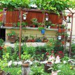Къщата и дворът на Мая Иванова