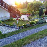 Дворът на съседите - сн. Миглена Янева