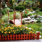Градината на Нели Рангелова - с. Рупките - 3