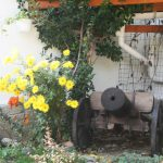 Декорация в двора на Петър Панков - Ямбол