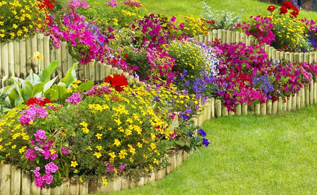 """Градинските ролки и палисади """"укротяват"""" растежа на растенията"""