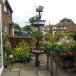 Цветен фонтан
