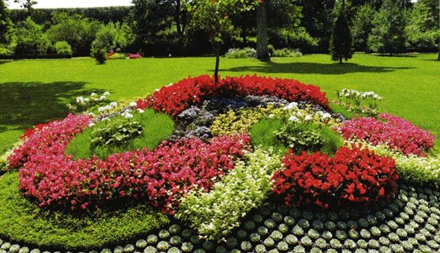 Приказката, която цветята разказват всяко лято...