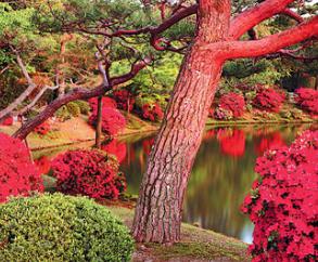 Същност на японските градини