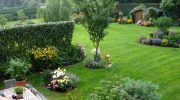 Билките – озеленяване с аромат на здраве