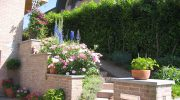 Жив плет за красива ограда