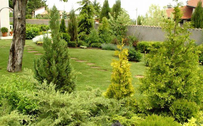 Пролетната градина – експлозия от багри и аромати!
