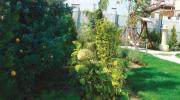 Семейна градина– проект и реализация
