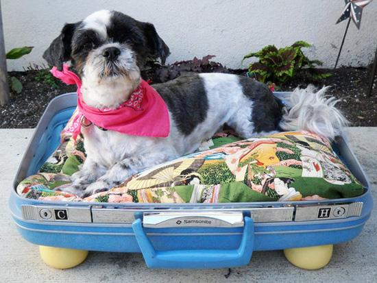 На пътешествие със стари куфари... у дома!
