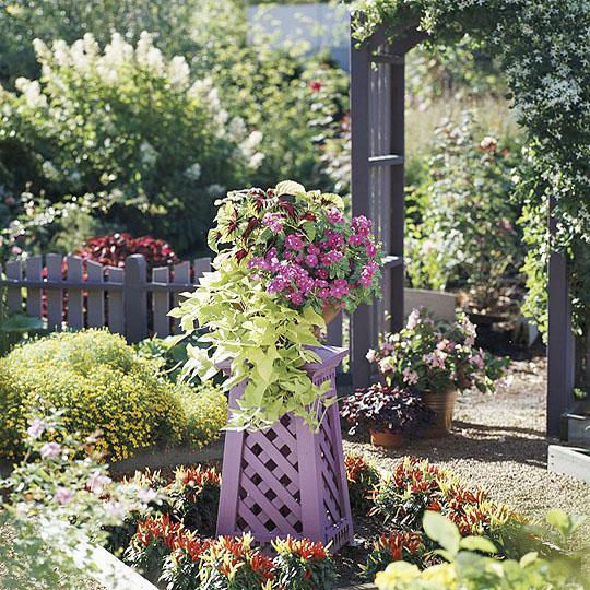 jilishta-dekorazia-garden-16