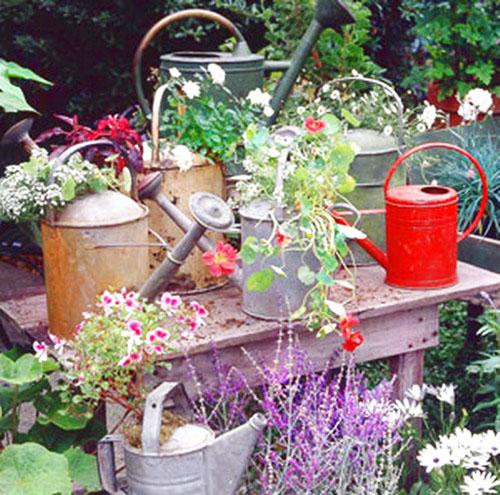 jilishta-dekorazia-garden-2