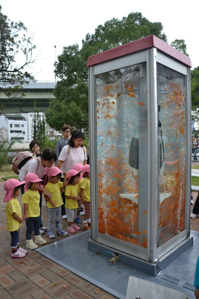 jilishta-telefonni-kabini-akvarium-3