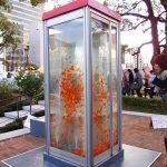 jilishta-telefonni-kabini-akvarium-8