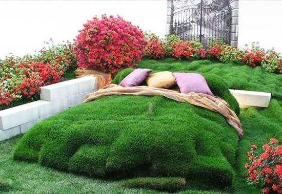 За зелени сънища!