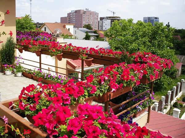 mini-gradini-na-balkona-2